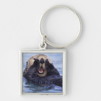 Cute Sea Otter | Alaska, USA Silver-Colored Square Key Ring