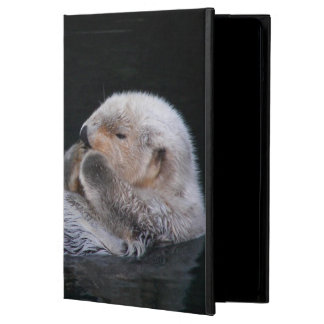 Cute Sea Otter Photo iPad Air Case