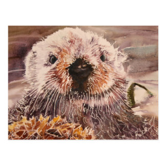 Cute Sea Otter Postcard