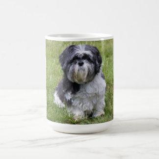 Cute shih tzu dog cute photo tea, coffee mug