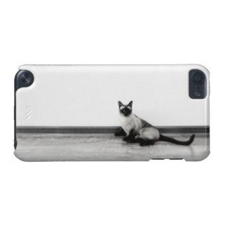 CUTE Siamese Cat Portrait Photograph iPod Touch 5G Case