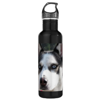 Cute Siberian Husky 710 Ml Water Bottle