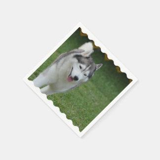 Cute Siberian Husky Disposable Napkins