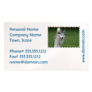 Cute Siberian Husky Pack Of Standard Business Cards