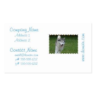 Cute Siberian Husky Pack Of Standard Business Cards