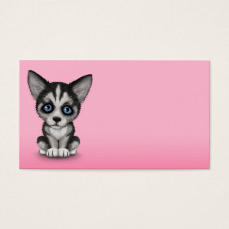 Cute Siberian Husky Puppy Dog on Pink