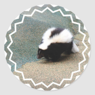 Cute Skunk Sticker