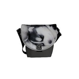 cute sleeping husky pups bag messenger bag