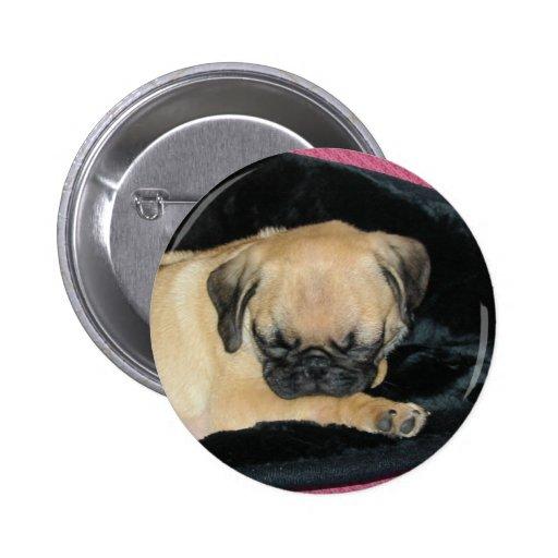 Cute Sleeping Pug Puppy Pins