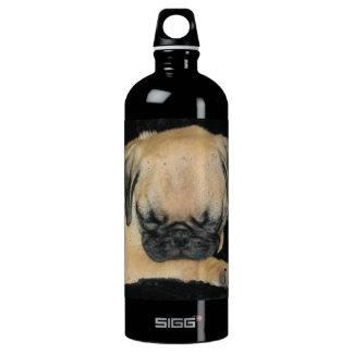Cute Sleeping Pug Puppy SIGG Traveller 1.0L Water Bottle