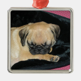 Cute Sleeping Pug Puppy Silver-Colored Square Decoration
