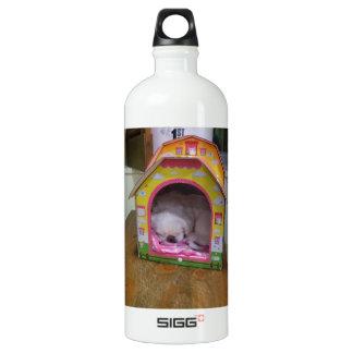 Cute sleeping puppy SIGG traveller 1.0L water bottle