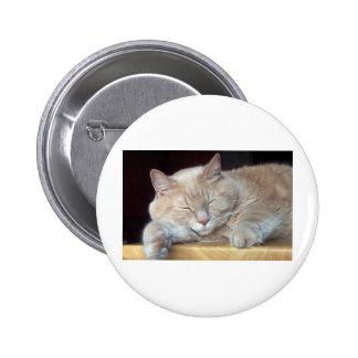 CUTE SLEEPY CAT BUTTON