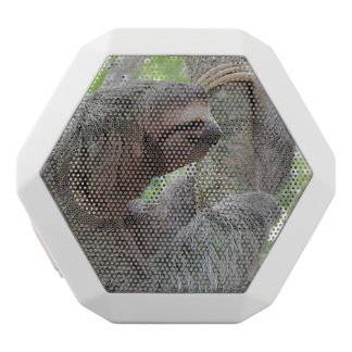 Cute Sloth White Boombot Rex Bluetooth Speaker