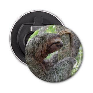 Cute Sloth Bottle Opener