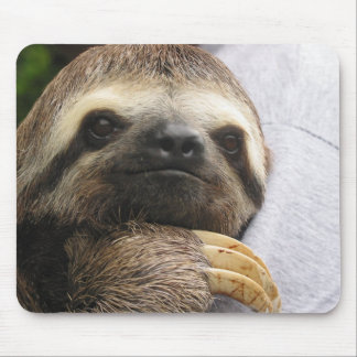 Cute Sloth Face Mouse Pad