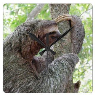 Cute Sloth Wallclock
