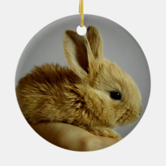 Cute small rabbit in hand round ceramic decoration