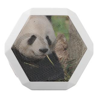 Cute Smiling Panda White Boombot Rex Bluetooth Speaker