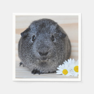 Cute Smooth, Silver Agouti Guinea Pig and Daisies Paper Napkin