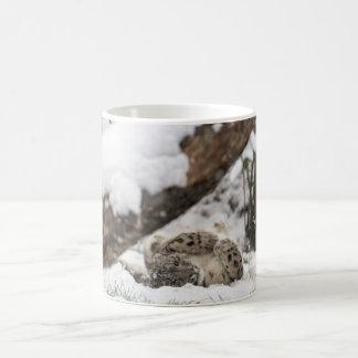 Cute Snow Leopard Plays in Snow Coffee Mug