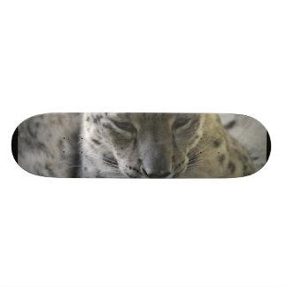 Cute Snow Leopard Skateboard