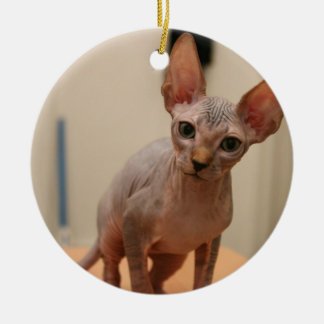 "Cute sphynx kitten ""I'm furless, are you?"" Ceramic Ornament"
