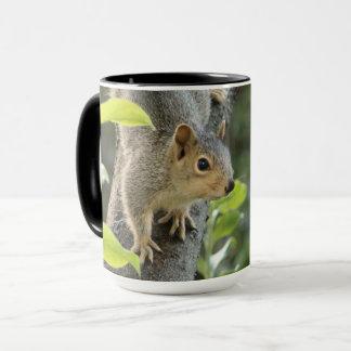 Cute squirrel climbing a tree -beautiful animal mug