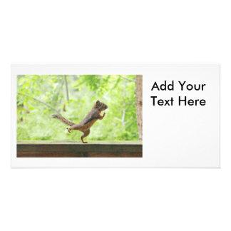 Cute Squirrel Doing Tai Chi Customized Photo Card
