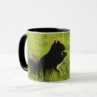 cute squirrel eating an acorn on grass -animal mug