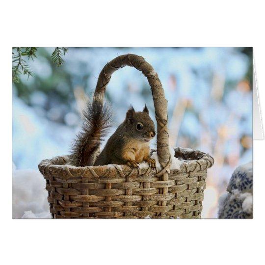 Cute Squirrel in a Basket in Winter Card