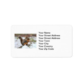 Cute Squirrel in the Snow Photo Label
