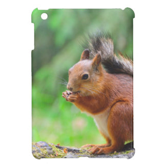 Cute squirrel iPad mini covers