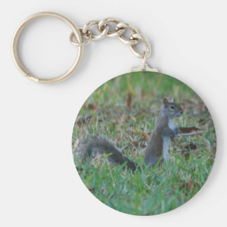 Cute Squirrel Key Ring