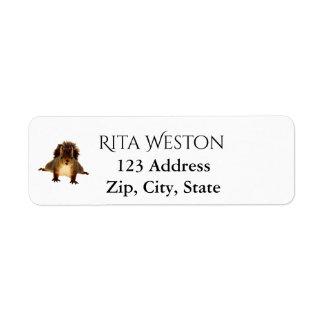 Cute squirrel on white address return label