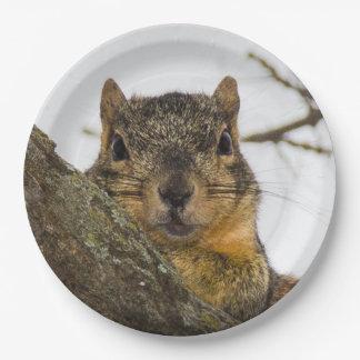 Cute Squirrel Paper Plate