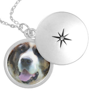 Cute St. Bernard Silver Plated Necklace