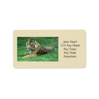 Cute Sumatran Tiger In The Grass Avery Label