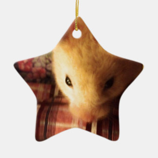 Cute Syrian Hamster Ceramic Star Decoration