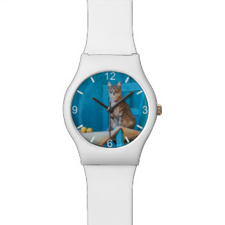 Cute Tabby Cat Kitten Blue Chair Photo  dial-plate Watch