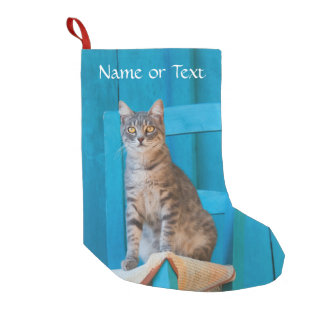 Cute Tabby Cat Kitten Blue Wooden - Personalized Small Christmas Stocking