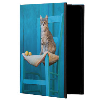Cute Tabby Cat Kitten on a Blue Chair Photo  hard Cover For iPad Air
