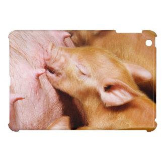 Cute Tamworth Piglet iPad Mini Covers
