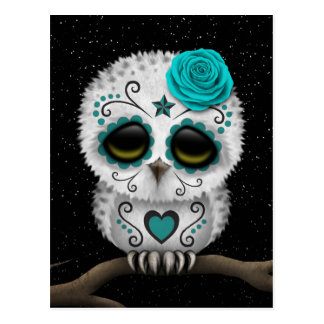 Cute Teal Day of the Dead Sugar Skull Owl Stars Postcard