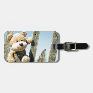 Cute Teddy Luggage Tag