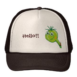 Cute Tortoise - hello hat
