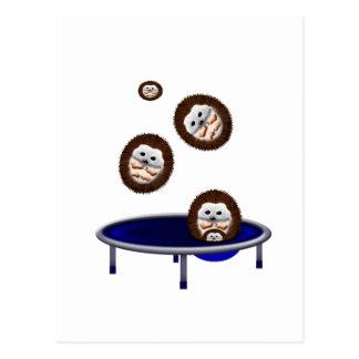 cute trampolining hedgehogs postcard