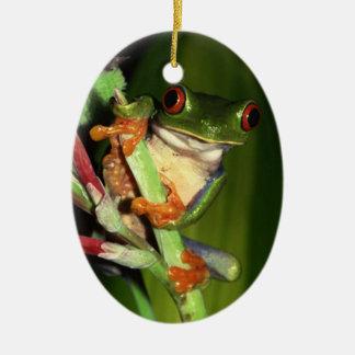 Cute Tree Frog ornament