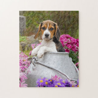 Cute Tricolor Beagle Dog Puppy Churn - Game Jigsaw Puzzle