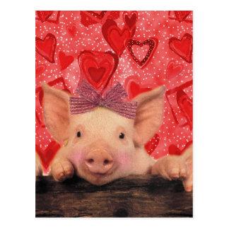 Cute Valentine pigs Postcard